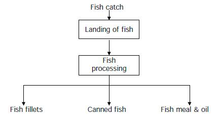 File:Flowdiagram fish.JPG